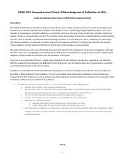 clinical reflection guide on documentation