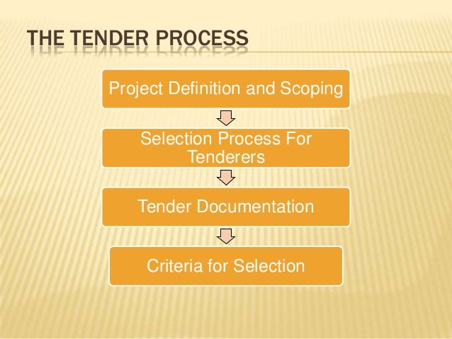 tender document meaning in business